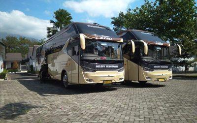 Tips Untuk Keamanan dan Kenyamanan Berwisata Menggunakan Bus Wisata