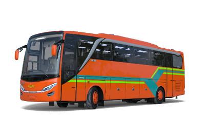 Perusahaan sewa big bus SHD HDD