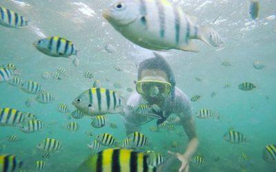 Sensasi Bersnorkeling di Pantai Nglambor Jogja