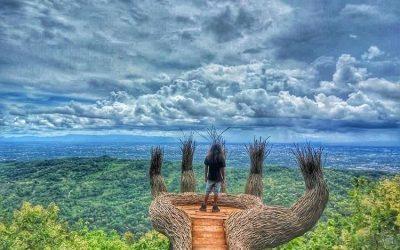 Hutan Pinus Mangunan, Spot Foto Terbaik di Jogja
