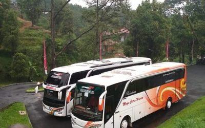 Inilah Teknik Pemasaran Rental Bus Wisata Yang Ampuh
