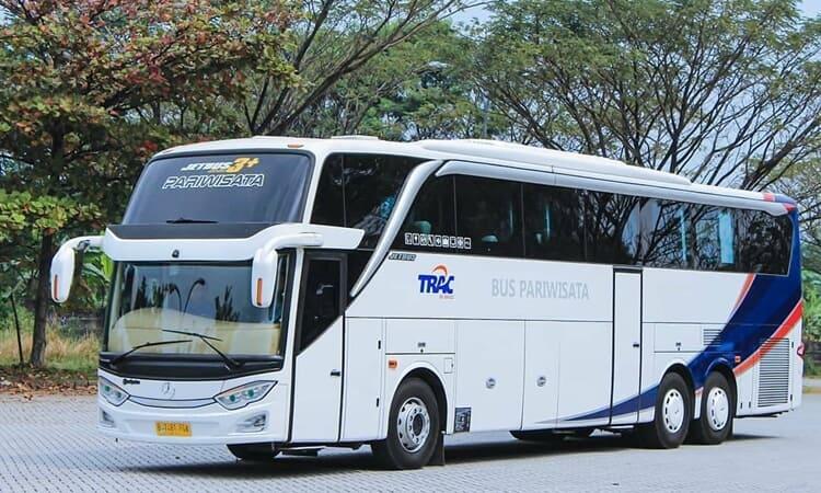 Ilustrasi Jenis Bus Pariwisata